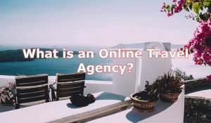 What is Online Travel Ageccy